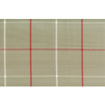 Hamel Teaberry Cotton Check