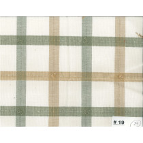 Cotton Check Koel Green Beige